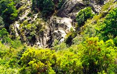 Parque Natural da Peneda-Gerês (António José Rocha) Tags: portugal gerês parquenaturaldapenedagerês natureza beleza rochas verde cores água cascata vida