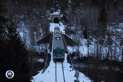 ALn 663-1113 (Treni In Foto) Tags: aln 663 treno regionale livrea xmpr linea ferroviaria aosta prè saint didier la salle neve