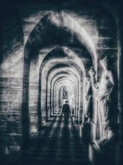 At the far end (LUMEN SCRIPT) Tags: monochrome museum gallery hall blur softfocus unsharp artisticphotography perspective arches nikon dof silhouette light shadow atmosphere history dark mood centralperspective sundaylights blackwhite lumenscript
