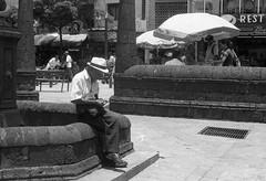Plaza (Magdalena Szata) Tags: 2017 analog colombia ilforddelta100 ilfordid11 medellin minoltaxd7 blackwhite streetphotography