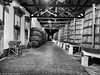 More Port Wine Barrels (César Vega-Lassalle) Tags: porto portugal port wine barrels olympus omd em5 monochrome microfourthirds m43 lumix leicadg