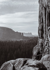 Walls of Sandstone (redfurwolf) Tags: saxonswitzerland nationalpark saxony germany mountain landscape wall cliff rock nature sky fantastic blackandwhite bw forest trees portraitformat mountains outdoors outdoor hiking photography landscapephotography photowalk redfurwolf sonyalpha sony sonydeutschland a99ii sal2470f28za blosstock