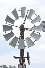 8-foot Intercolonial Boring Company (IBC) Geared Simplex; NSW, Australia (sarracenia.flava) Tags: ibc geared simplex intercolonial boring company nsw australia windmill moffat virtue