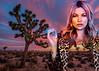 kate moss joshua tree (kelly.giglio) Tags: collage digitalcollage celebrity katemoss angelinajolie desert nationalpark