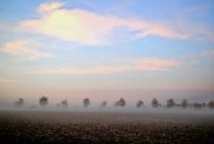 Silence all around (Tobi_2008) Tags: landschaft landscape bäume trees himmel sky wolken clouds sachsen saxony deutschland germany allemagne germania