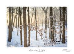 Morning Light (baldwinm16) Tags: winter sunrise woods woodland fog foggy february cold snow scenic landscape nature natureofthingsphotography