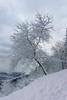 Año de nieves... (Txulalai) Tags: invierno winter nieve paisaje landscape montaña naturaleza nature pagasarri bilbao bizkaia basquecountry euskadi sony sonyilce6000 sonya6000 sonyalpha6000