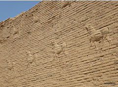 Western Wall lower Ishtar Gate, Babylon (4).jpg (tobeytravels) Tags: iraq babylon babel mesopotamia akkadian amorite hammurabi assyrian neobabylonian hanginggardens achaemenid seleucid parthian roman sassanid alexanderthegreat nebuchadnezzar sargon chaldean hittites sennacherib xerxes