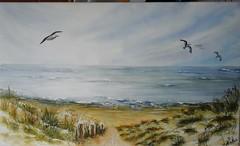 LA MER DU NORD (notte.martha) Tags: mers merdunord mouettes dunes marines cotes paysagesmarins cotesbelge