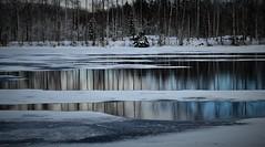 Vinterälv (lena.fredin) Tags: