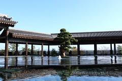 Temple Fountain (aristhought) Tags: hongkong fountain water scenery landscape serene peaceful temple calm