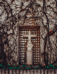 Faith and Life (Jorge Lama Moral) Tags: church faith god nature flora architecture monastery sevilla sevillahoy cartujadesevilla