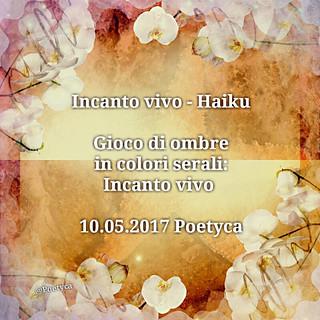 Incanto vivo – Haiku