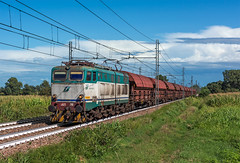FS E655 293 (maurizio messa) Tags: e655 caimano pavese alpc mau bahn ferrovia treni trains railway railroad cargo freighttrain fret guterzuge nikond7100 lombardia