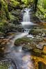 Puck's Glen (robinta) Tags: waterfall river stream burn rapids forest longexposure pentax sigma ks1 pentaxart sigma1770 scotland scenic argyll woods woodland ngc blur movement nature rocks moss