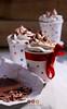 Vanilla Cupcakes (speakingaloud) Tags: cupcakes vanilla chocolate dessert food photography sweet