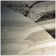L'hiver #pascalmoignphotographe #gel #finistere #bretagne (photos.pascal.moign) Tags: fclampaulplouarzel plougonvelin