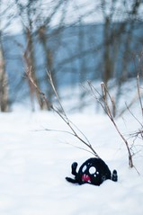 (PblCb) Tags: dontstarve spider plush toy winter snow