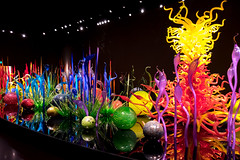 Chihuly Garden and Glass, Seattle, Washington, USA (takasphoto.com) Tags: apsc america chihulygardenandglass city dalechihuly eeuu estadosunidos fuji fujixt1 fujixt1fujifilm fujifilm fujinon fujinonlensxf18135mmf3556rlmoiswr fujinonxf18135mmf3556rlmoiswr kingcounty leed leedsilver landmark lens metropolitanarea mirrorless mirrorlesscamera nordouestdesétatsunis noroestepacífico noroestedelpacífico northamerica northwest observationtower observatory pnw pacific pacificnorthwest pacificocean pazifischernordwesten rockymountains seaport seattle spaceneedle street streetphotography streetscape tower usa usaunitedstatesofamerica unitedstates unitedstatesofamerica wa washington washingtonstate westcoast worldsfair wybrzeżepółnocnozachodnie xmount xt1 xtranscmosii xtransii xf18135