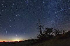 Geminid Meteor Shower 2017 Over El Centro From Dos Cabezas in the Anza-Borrego Desert (slworking2) Tags: california unitedstates us meteor meteorshower astronomy shootingstars doscabazasstation doscabezas elcentro ocotillo geminids 2071 anzaborrego anzaborregodesertstatepark desert breathtakinglandscapes