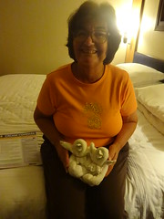 Towel animals.  Baby penguins in nest (Sharon Burkhardt) Tags: brillianceoftheseas royalcaribbean cruising