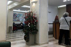 Checking In Again (RobW_) Tags: ritsa checkingin lefkos stavros hospital athens greece monday 11dec2017 december 2017 diaryphoto mdpd2017 mdpd201712