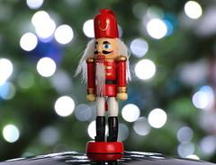 Attention Santa,s Here (kpce1960) Tags: bokeh macromonday memberschoice