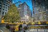 New York Christmas (JMS2) Tags: nyc newyork rockefellercenter christmastree icerink manhattan city lights festive decorations