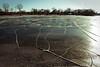 tenney park ice (kerwilliger) Tags: wisconsin madison winter lake mendota ice