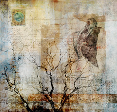 altered: cold comfort (hoolia14oh4) Tags: altered collage art digitalcollage anatomy tree texture postage
