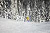 IMG_0506 (clappstar) Tags: stevenspass skiing snowskiing