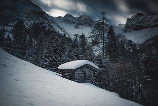 A cold Winterday