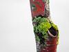 Lichen To the Branch (Orbmiser) Tags: olympus40150mmf4056r 43rds em1 mirrorless omd olympus ore portland tree branch lichen