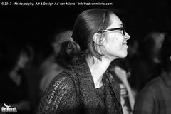2017 Bosuil-Het publiek bij Joost de Lange en Band Of Friends 21-ZW