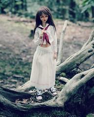 Dollcember Day20 ~ Woods (StrawDojy) Tags: doll poupée angelphilia pinkdrops pinkdropsn°10 softskin tanskin dollcember animedoll vmf50 obitsu quarantotto yamato dollcore realartproject rap