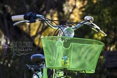 Proyecto 365-10 (♥ Luna ♥) Tags: bicicleta proyecto 365 robot robótica futuro presente