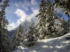 PC290022 (turbok) Tags: ennstal landschaft schnee schneeundeis stimmungen winter c kurt krimberger