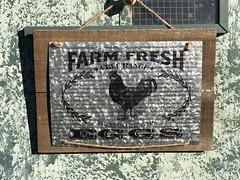 Farm Fresh sign (Anna Sunny Day) Tags: chickencoop