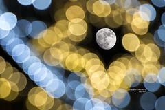 Luna de Navidad 1611 (José Martín-Serrano) Tags: luna lunallena nocturnas nikond800 nocturna navidad luces lucesnavidad villanuevadelacañada villanueva madrid moon