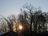 Rising Sun. (dccradio) Tags: lumberton nc northcarolina robesoncounty outdoors outside cold winter january coldmorning morning goodmorning nature natural sun risingsun sunrise tree trees branches treebranches treelimbs sticks light sunlight building photooftheday project365 photo365