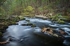 Bodetal (sebastianhüttler) Tags: river fluss panasonic lumixg6 bodetal harz landscape germany deutschland water forrest