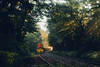 The Train Arrives (Lucinda Lovering) Tags: putney train vermont river morning summer light rays beams oldfashioned landscape