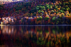 """My favorite colors """"are"""" October ...(A walk through 2017) (Captions by Nica... (Fieger Photography)) Tags: october reflections reflection mountain trees tree colorful colors forest fall water landscape lake autumn nature serene quebec canada"""