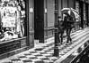 Umbrella (Henka69) Tags: umbrella rain street praha streetphotography prague