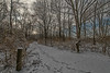 First Snow (Thomas Kloc) Tags: eastbrunswick newjersey cold footprints outdoor path snow trail winter unitedstates us