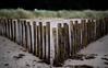 V (Outdoorjive) Tags: other desktop flikr winter eastanglia places uk stevepalmerphotoamemorycaptured coast norfolk seascapes holmenextthesea england unitedkingdom gb