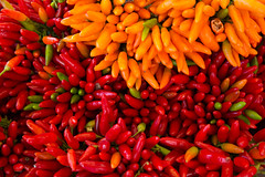 Colorful pepper (Rafał Banach) Tags: red orange green vegetables food peppers