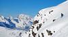 Which Way Now? (David Roberts 01341) Tags: skiing offpiste horspiste freeride verbier 4vallees snow winter switzerland suisse newgenerationskischool bagnes