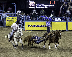 0246937425-95-Cowboy Steer Wrestling at the 2017 National Finals Rodeo-3 (Jim There's things half in shadow and in light) Tags: 2017 america american lasvegas nfr nationalfinals nevada rodeo southwest thomasandmack usa unitedstates action animal cowboy december sports western steerwrestling cow horse speed