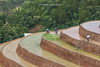 _J5K0826.0617.Khao Mang.Mù Cang Chải.Yên Bái (hoanglongphoto) Tags: asia asian vietnam northvietnam northwestvietnam landscape scenery vietnamlandscape vietnamscenery terraces terracedfields transplantingseason sowingseeds hillside people landscapewithpeople canon canoneos1dsmarkiii hdr tâybắc yênbái mùcangchải khaomang phongcảnh ruộngbậcthang ruộngbậcthangmùcangchải mùacấy đổnước người phongcảnhcóngười sườnđồi mùcangchảimùacấy canonef70200mmf28lisiiusm ricceterracedinvietnam terracedfieldsinvietnam